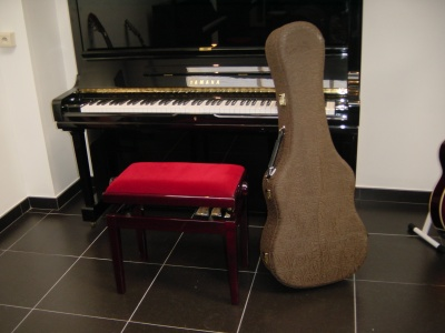 housse_luxe_guitare2_400